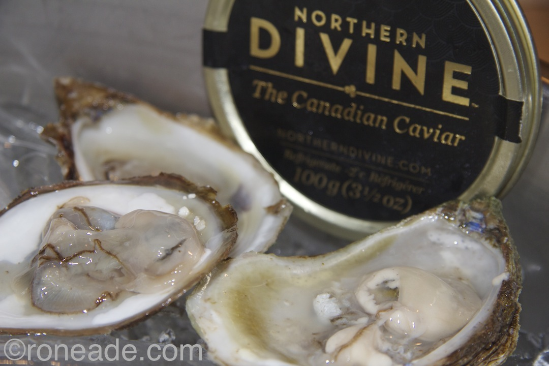 Opening sustainable nibbles of East Coast oysters and Northern Devine caviar.